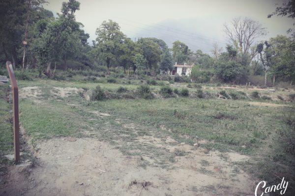 12 & 14 Marla Plots in Norblinga Dharamsala.