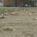 1, 2 Kanal Plot for sale in Sidhpur Sukker Road.
