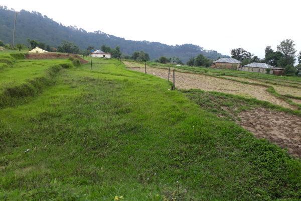 Plots at Sudher Dharamshala